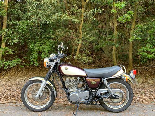 森の中のSR400